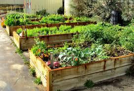 Uw tuin in relatie tot de buren (deel 1)
